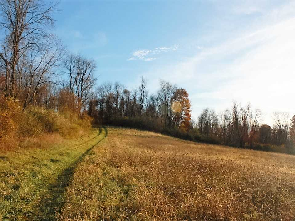Additional photo for property listing at QUAKER HILL Road QUAKER HILL Road Pawling, New York 12564 United States