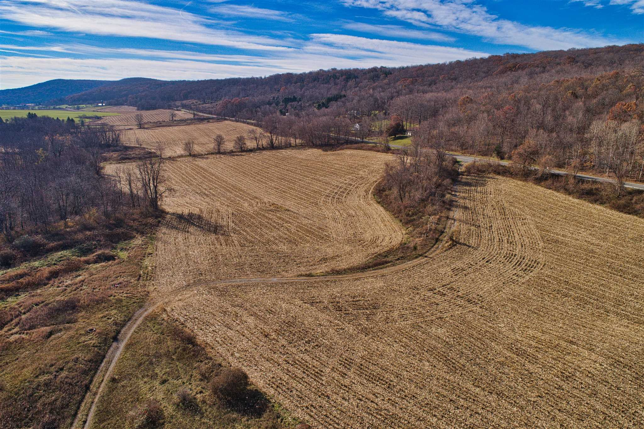 Land for Sale at ROUTE 22 ROUTE 22 Ancram, New York 12502 United States