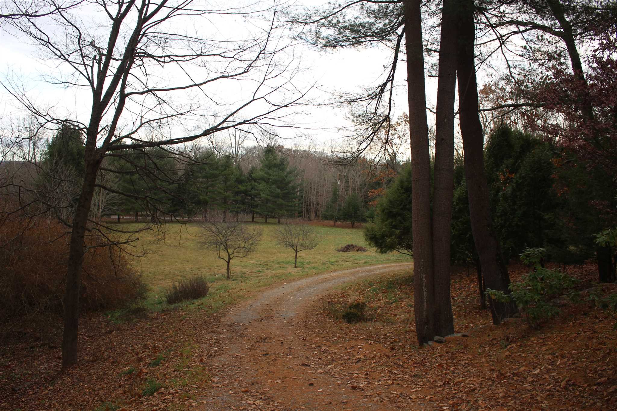 Additional photo for property listing at 103 YELLOW CITY ROAD 103 YELLOW CITY ROAD Amenia, New York 12501 United States