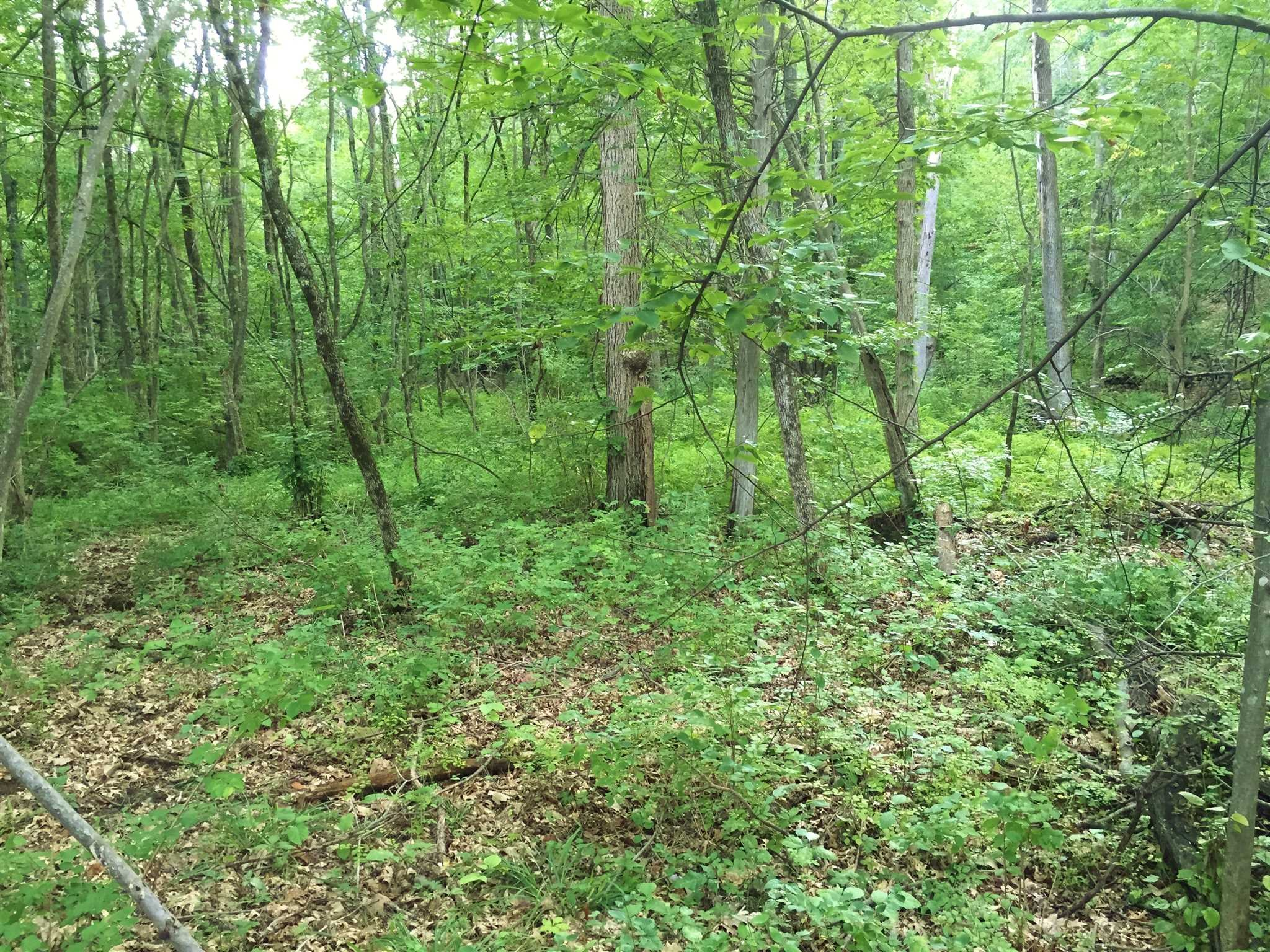 Land for Sale at BAXTER LOT 2 BAXTER LOT 2 Red Hook, New York 12571 United States