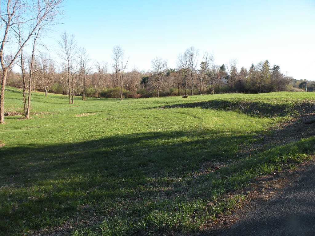 Land for Sale at 99 VIEWMONT ROAD 99 VIEWMONT ROAD Germantown, New York 12526 United States