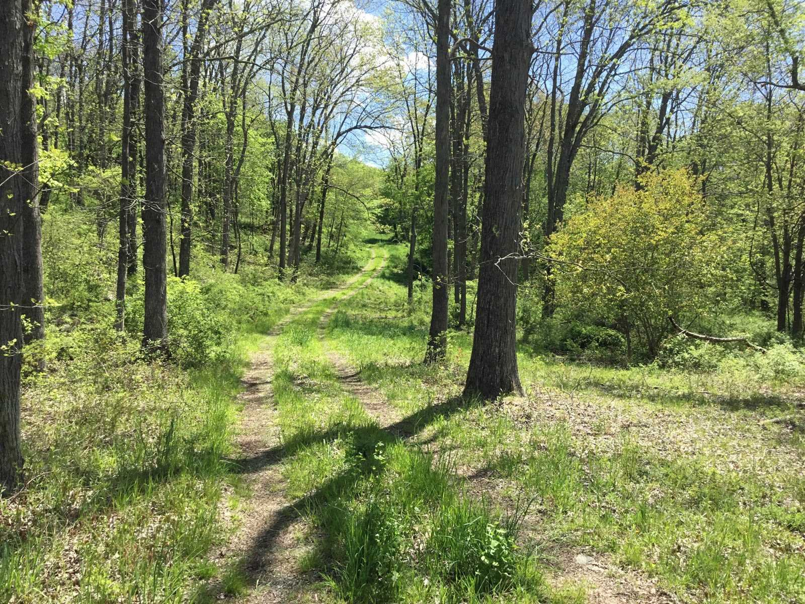 Additional photo for property listing at 560 CHESTNUT RIDGE ROAD 560 CHESTNUT RIDGE ROAD Dover Plains, New York 12522 United States