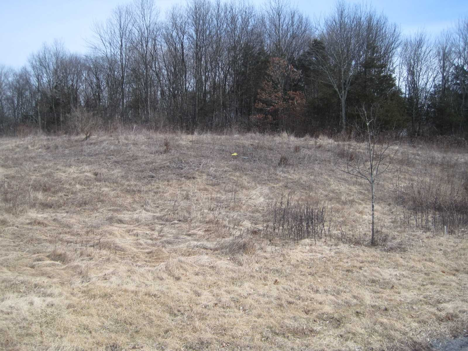 Land for Sale at ALBRECHT LANE ALBRECHT LANE Pleasant Valley, New York 12569 United States
