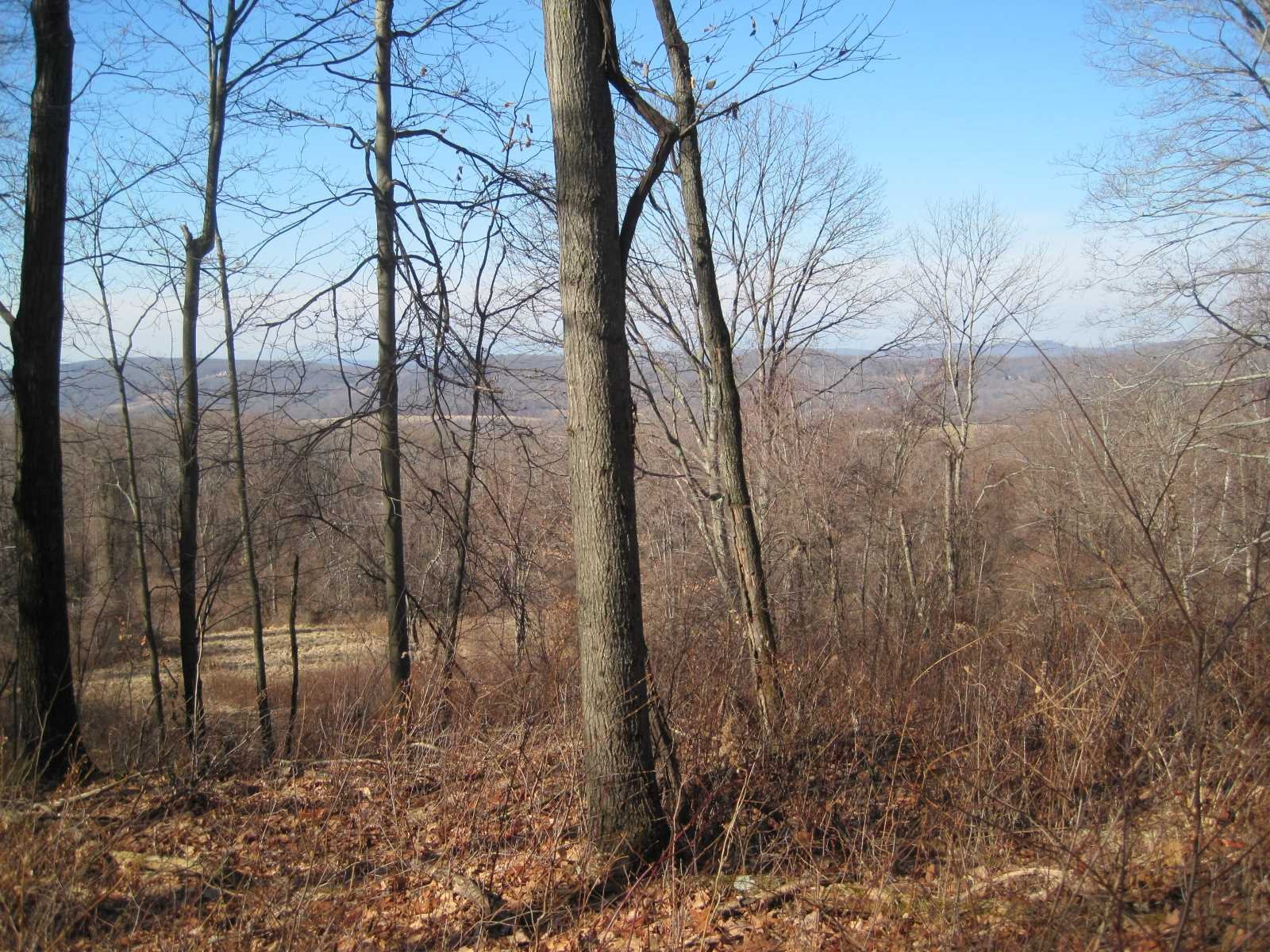 Additional photo for property listing at ANCRAM ROAD ANCRAM ROAD Ancramdale, New York 12503 United States