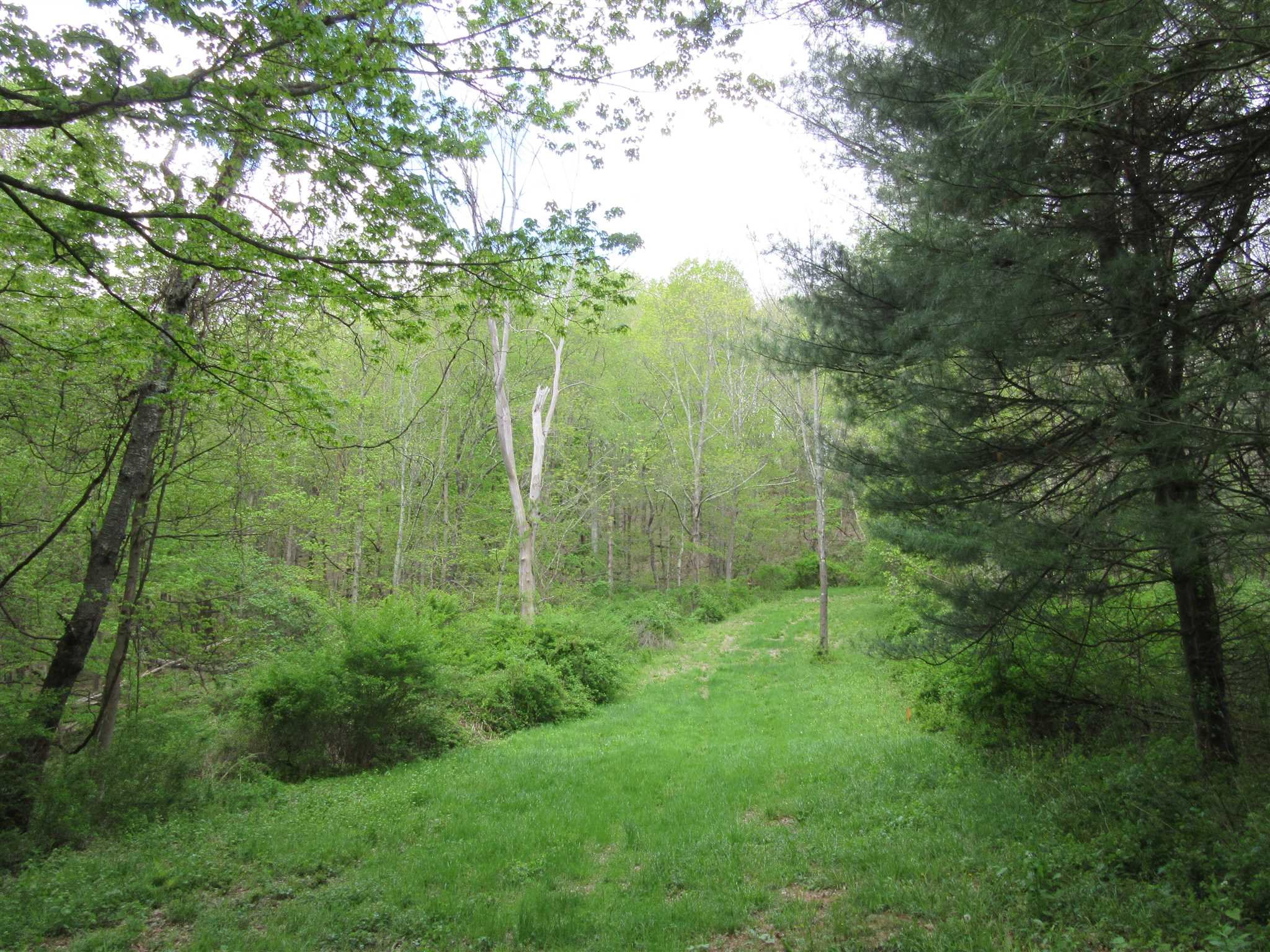 Land for Sale at 4993 ROUTE 22 LOT 1 4993 ROUTE 22 LOT 1 Amenia, New York 12501 United States