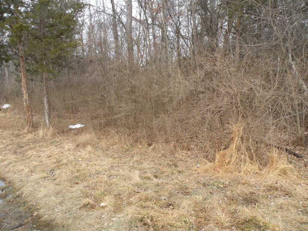 Land for Sale at 367 VIEWMONT ROAD 367 VIEWMONT ROAD Germantown, New York 12526 United States
