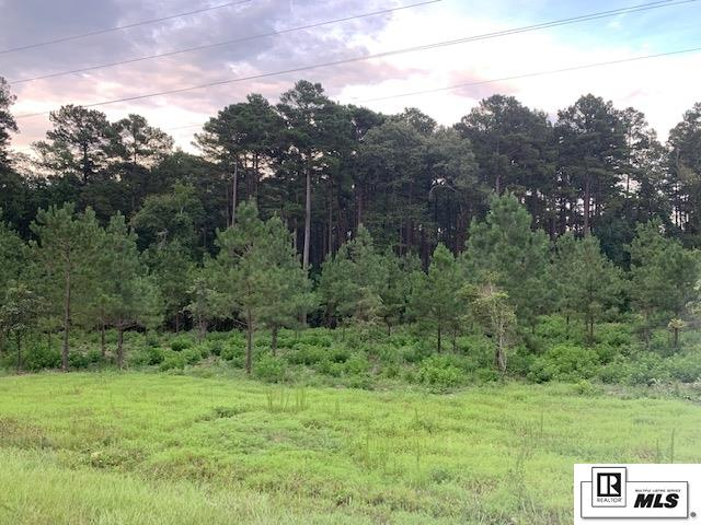 000 Highway 546 Tract 1, 4.342 Acres