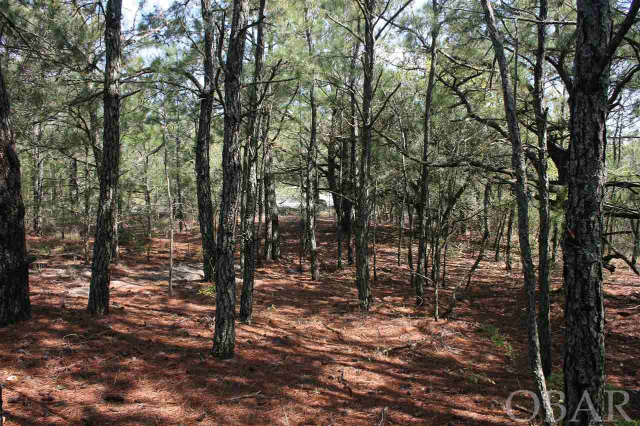 2253 Bluefish Crescent,Corolla,NC 27927,Lots/land,Bluefish Crescent,100223