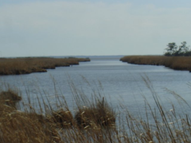 278 Sunrise Crossing Dr,Kill Devil Hills,NC 27948,Lots/land,Sunrise Crossing Dr,57479
