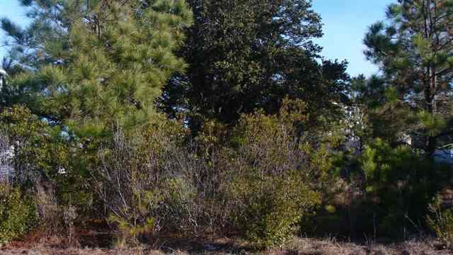 849 Drifting Sands Drive,Corolla,NC 27927,Lots/land,Drifting Sands Drive,59303