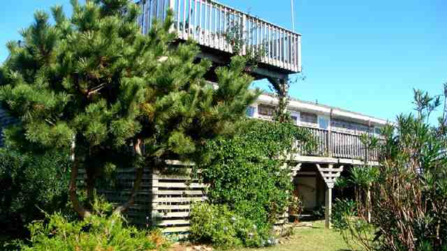 40315 Williams Road,Avon,NC 27920,3 Bedrooms Bedrooms,2 BathroomsBathrooms,Residential,Williams Road,62107