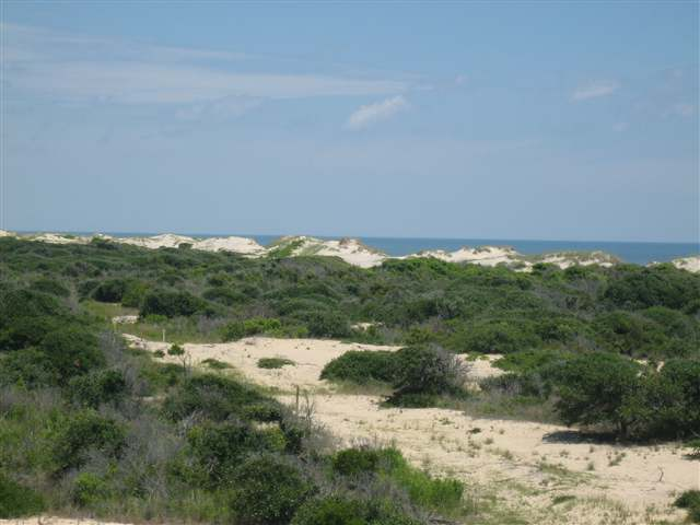 1310 High Dune Loop,Corolla,NC 27927,7 Bedrooms Bedrooms,6 BathroomsBathrooms,Residential,High Dune Loop,62130