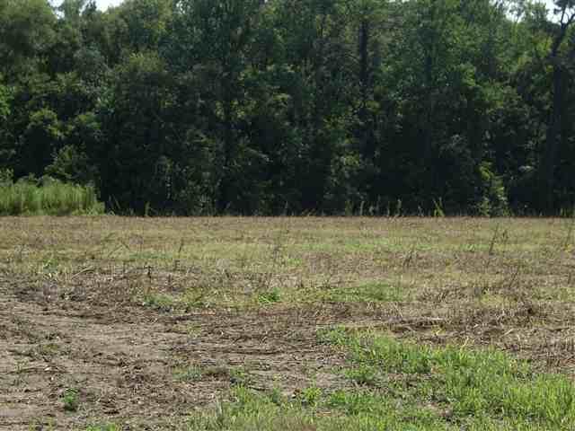 TBD Albemarle Church Road,Columbia,NC 27925,Lots/land,Albemarle Church Road,62356