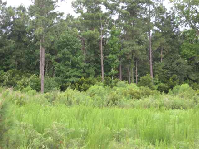104 Douglas Court,Harbinger,NC 27941,Lots/land,Douglas Court,62566