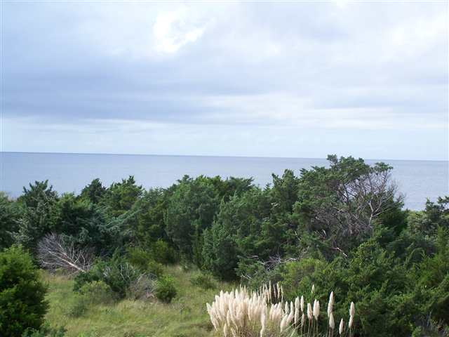 23183 Pappy Lane,Rodanthe,NC 27968,4 Bedrooms Bedrooms,4 BathroomsBathrooms,Residential,Pappy Lane,63363