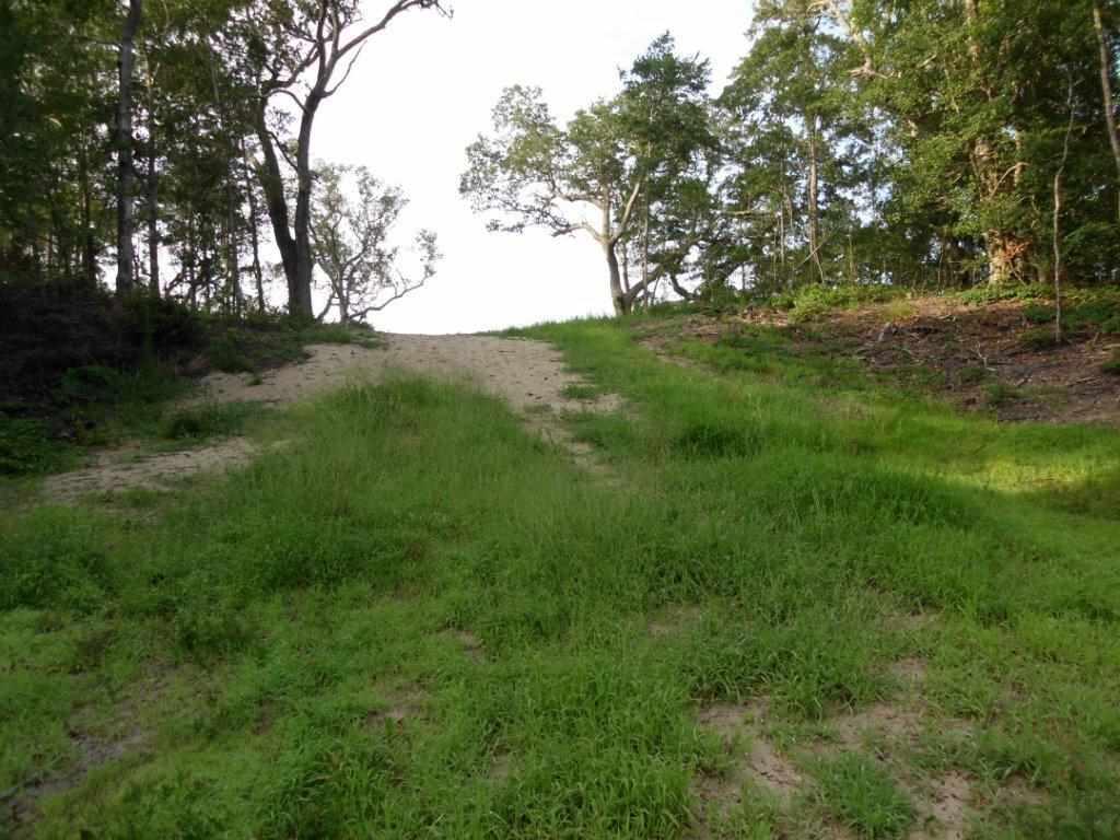144 Shingle Landing Lane Lot 33, Kill Devil Hills, NC 27948