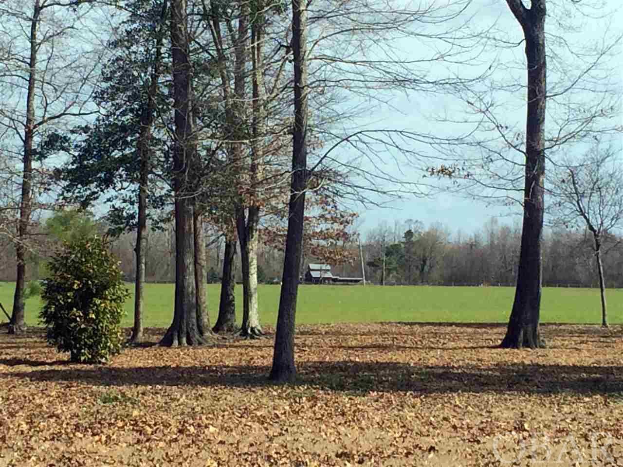 1708 NC HIGHWAY 45, COFIELD, NC 27922  Photo 4