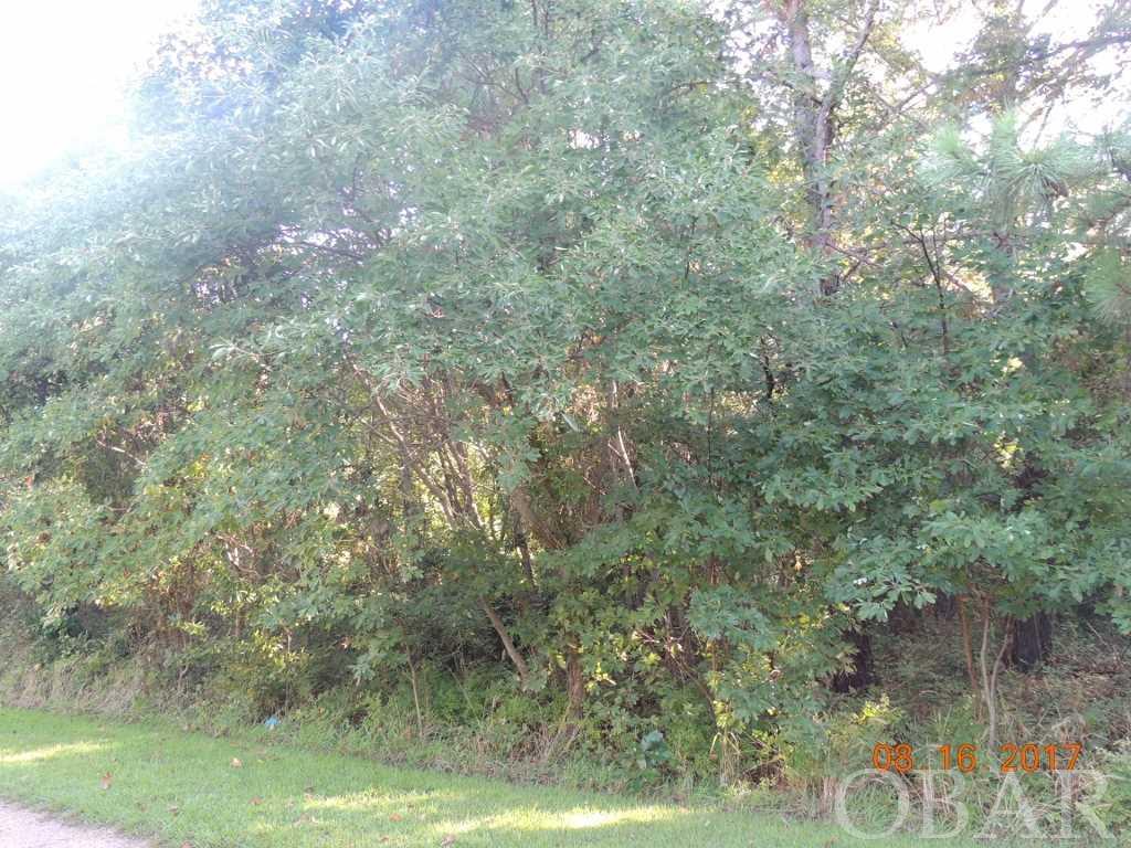 107 Blossum Brooks,Jarvisburg,NC 27947,Lots/land,Blossum Brooks,97497