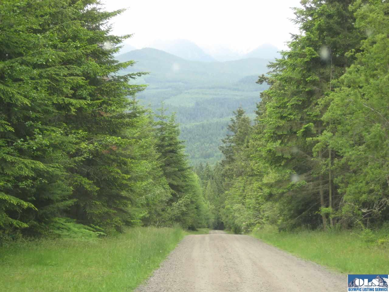 NKA Lost Mountain Lane, Sequim, WA 98382