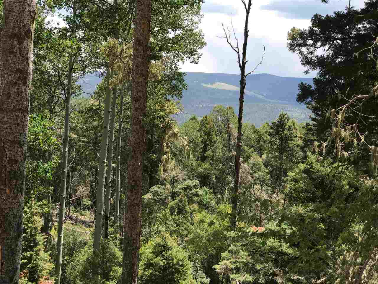 Lot 102 Zia Rd, Angel Fire, NM 87710