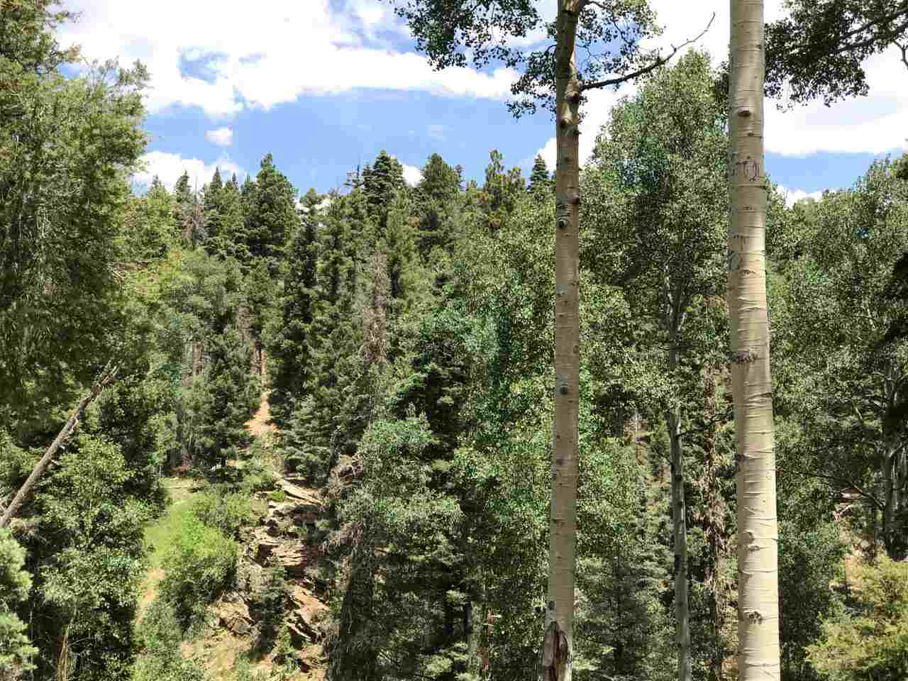 LOT 45 Sacramento Dr., Angel Fire, NM 87710