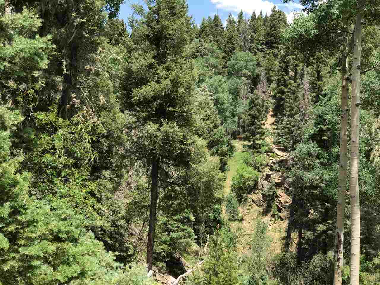 Lot 46 Sacramento Drive, Angel Fire, NM 87710