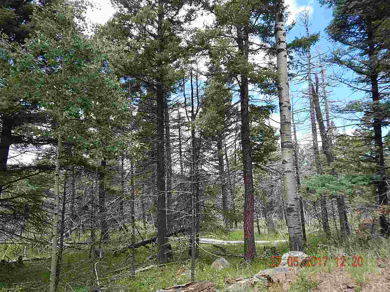 Lot 1225 Rainbow Overlook, Angel Fire, NM 87710