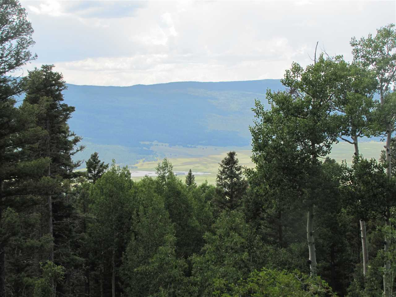 Lot 87 Elk Horn Drive, Angel Fire, NM 87710