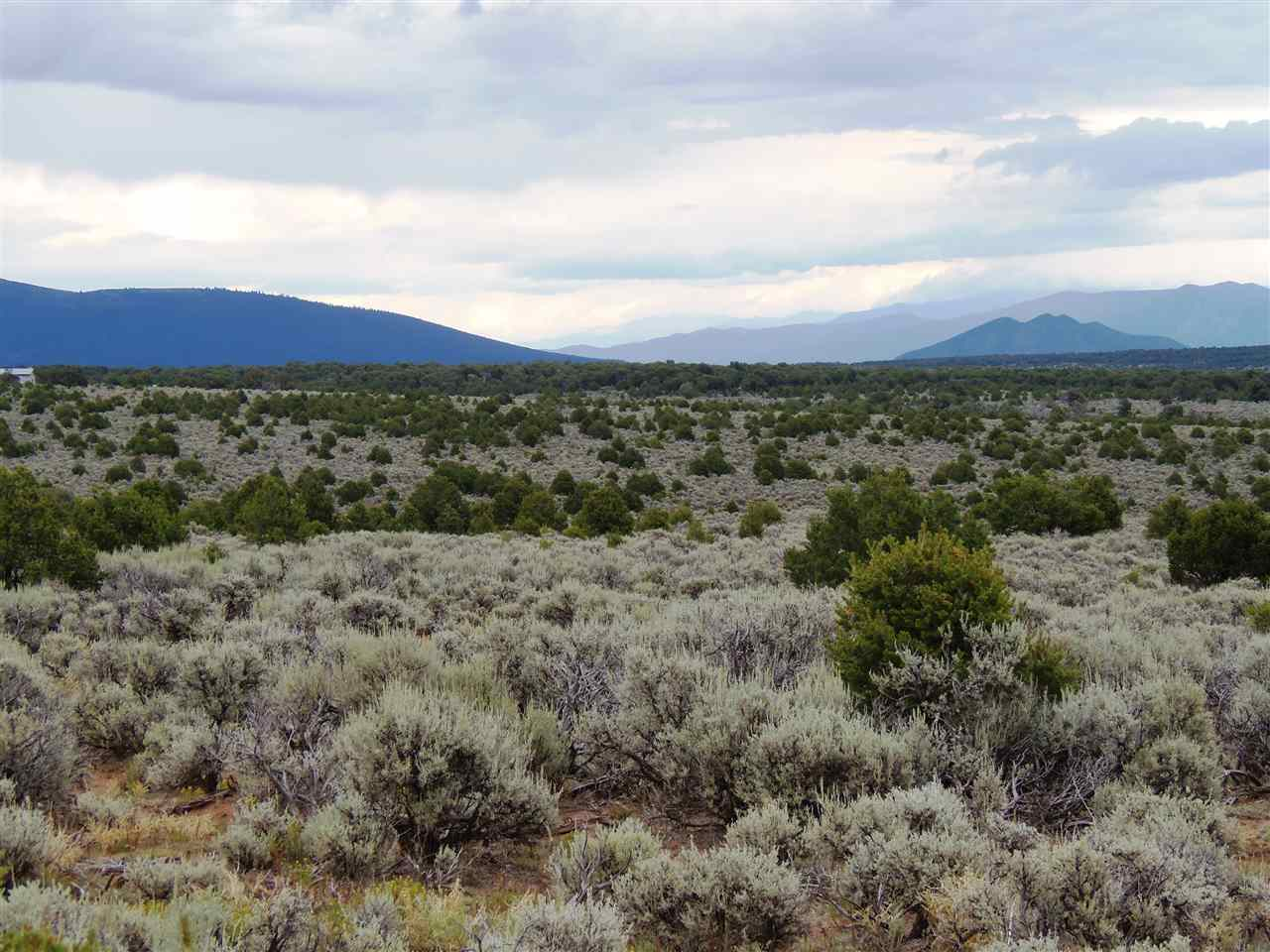 7/10 M Colorado Rd. on Rt., Tres Piedras, NM 87577