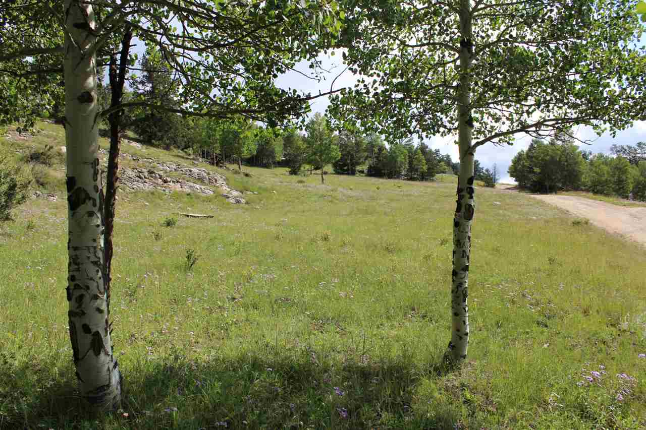 Bobcat Pass, Red River, NM 87558