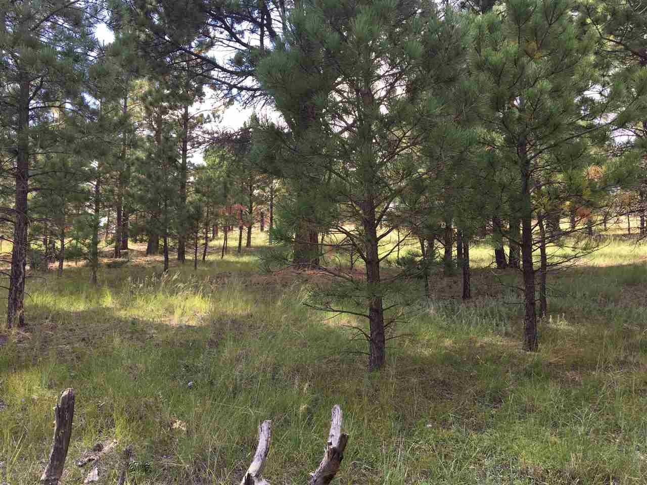 Lot 1074 Woodlands, Angel Fire, NM 87710
