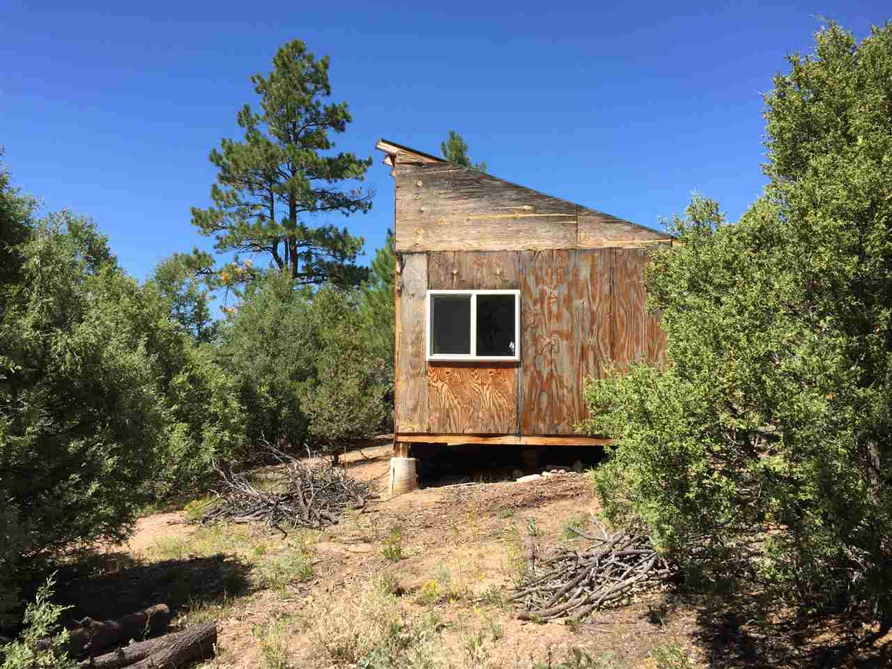 4 Echo Forest Lane, Questa, NM 87556