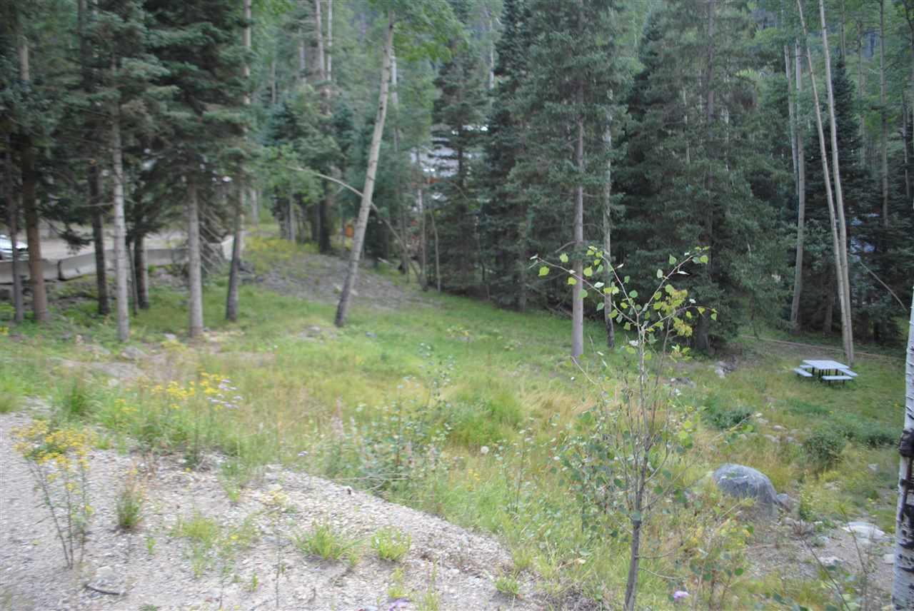 14 Pattison Loop, Taos Ski Valley, NM 87525-9999