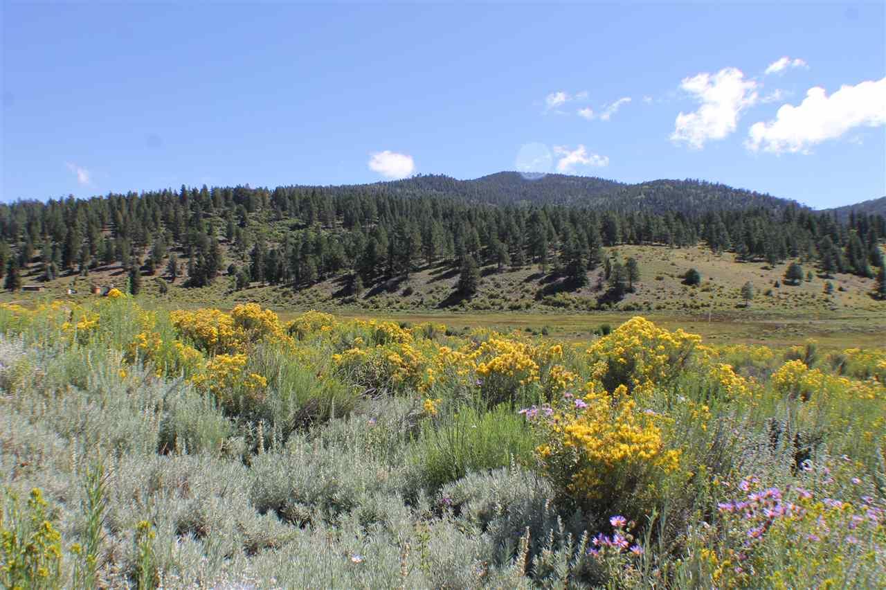 Tract A-1 Cinquefoil Lane, Taos, NM 87571