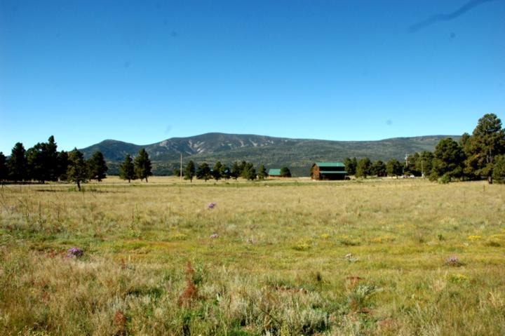 Lot 15 Camino de Norma, Black Lake, NM 87710