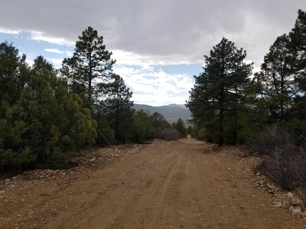 Echo Forest Road, Questa, NM 87556