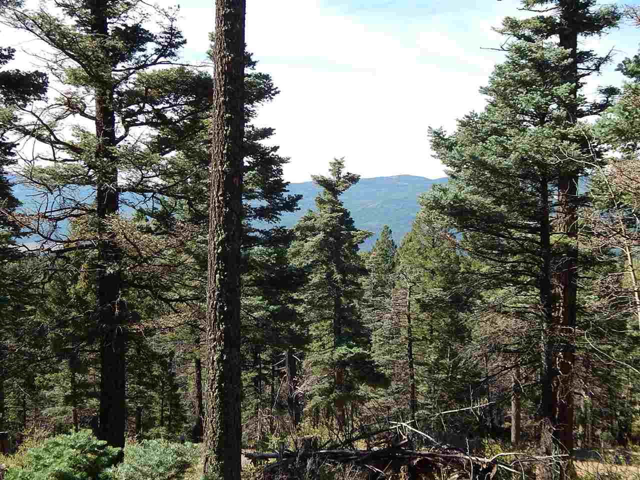 3425 Glenview Way, Angel Fire, NM 87710