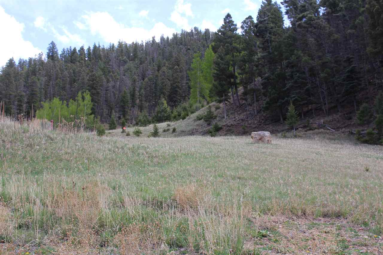 Lot 33 La Belle Ct, Red River, NM 87558
