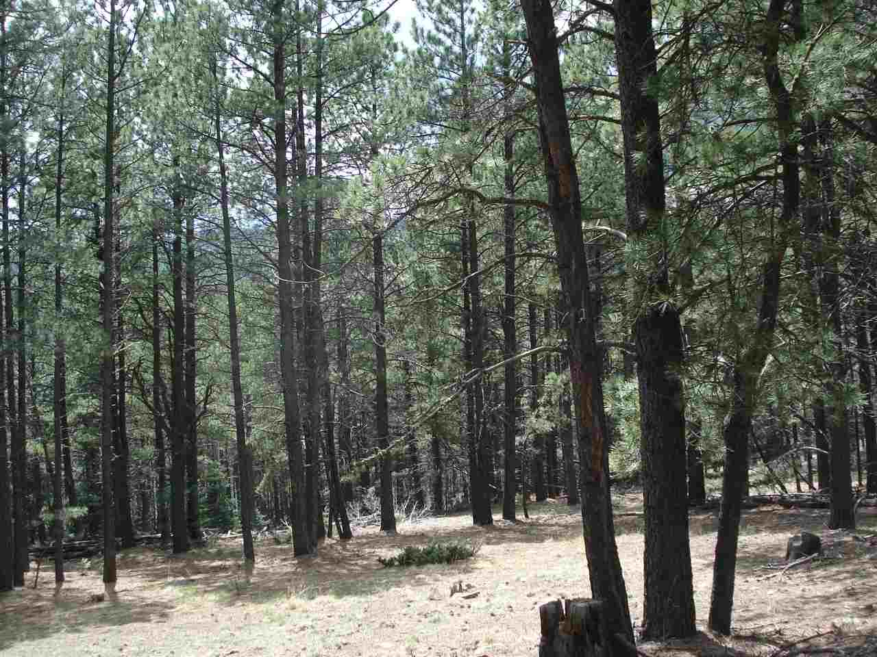 Lot 87 San Juan Dr, Angel Fire, NM 87710