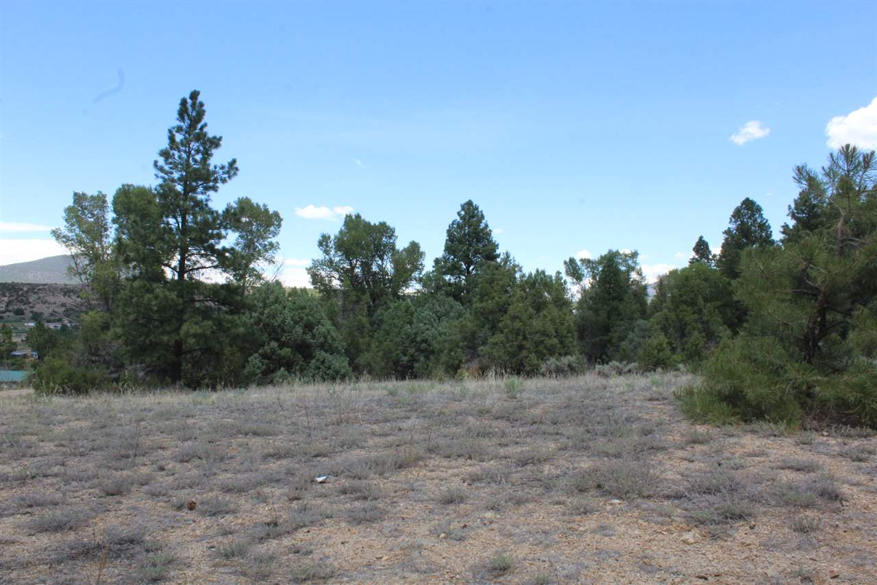 Lot 5 Hunts Rd, Questa, NM 87556