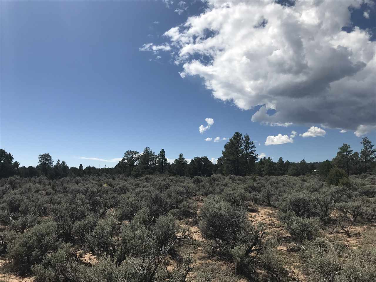 Block B Lots 20 21 22 23, Tres Piedras, NM 87577