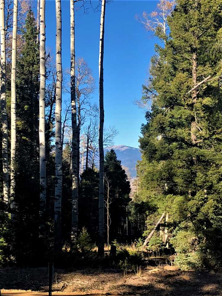 Lot 1434 Calle De Los Caballeros, Angel Fire, NM 87710