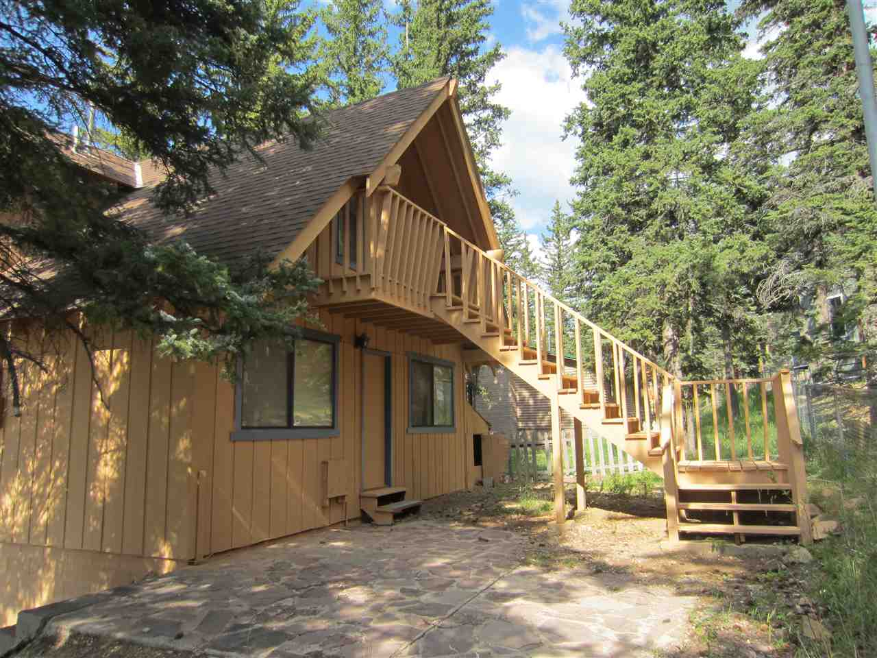 1207 Willow Placer, Red River, NM 87558