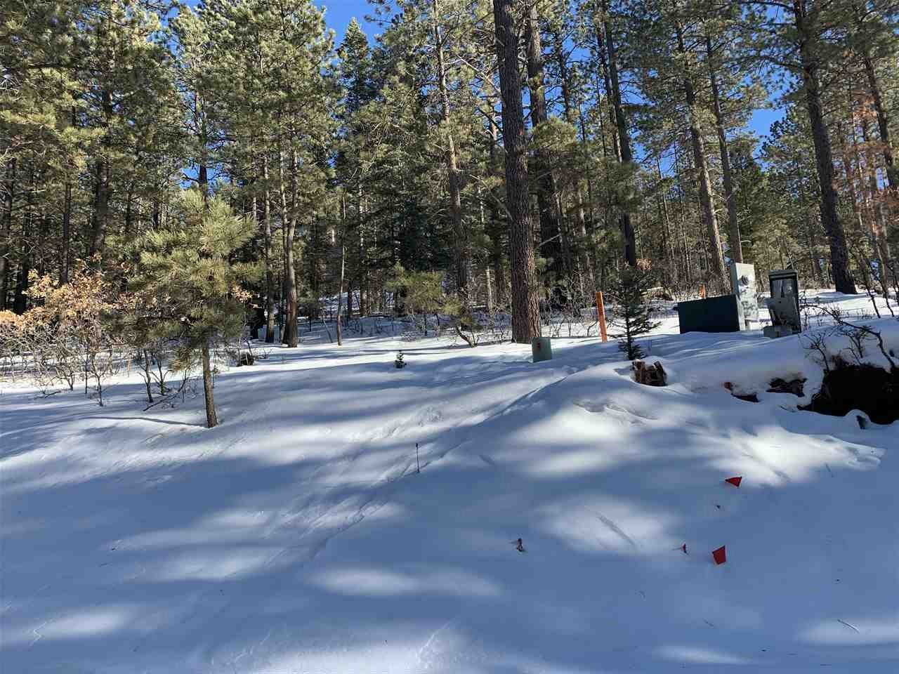 99 Back Basin Road, Angel Fire, NM 87710
