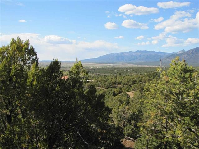 Lot 3B Bluebird Lane, Taos, NM 87571
