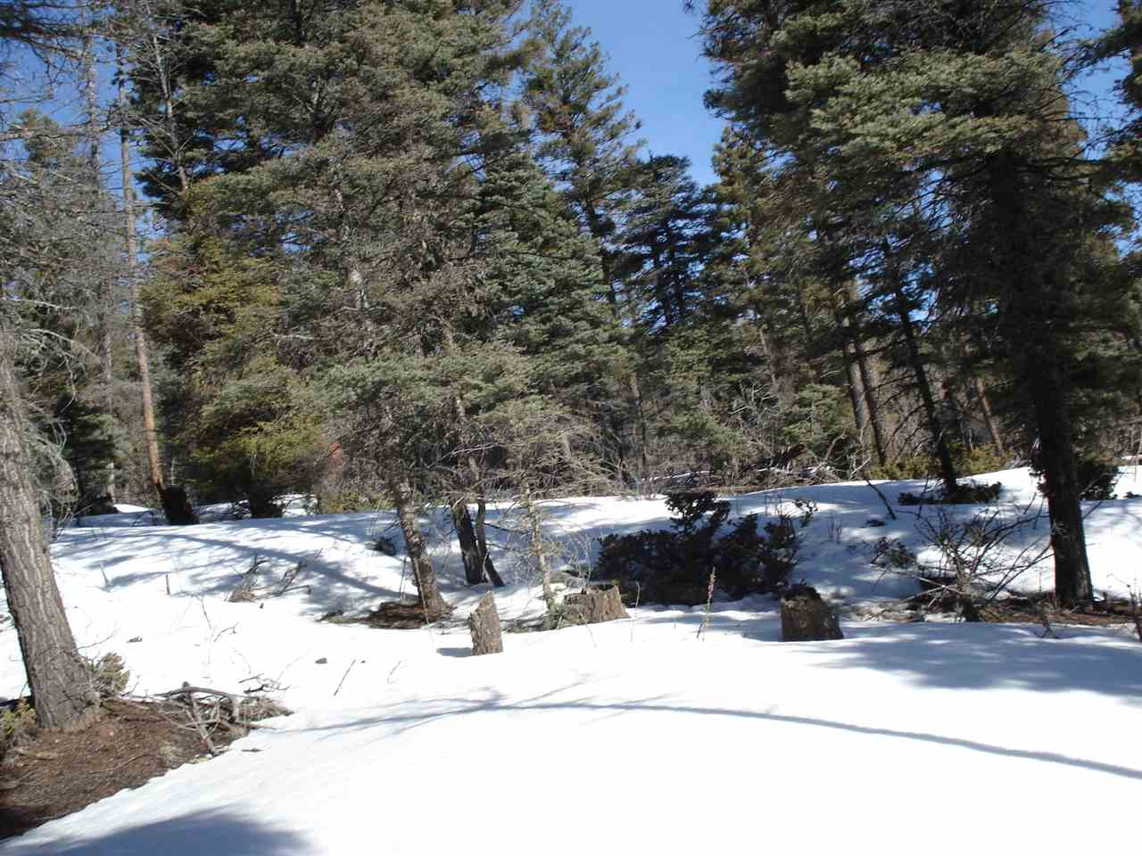 Lot 350 Vail Loop, Angel Fire, NM 87710