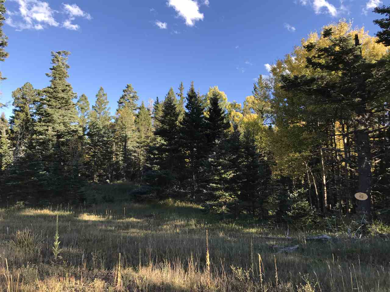 Lot 82 Elk Meadow, Ange Fire, NM 87710
