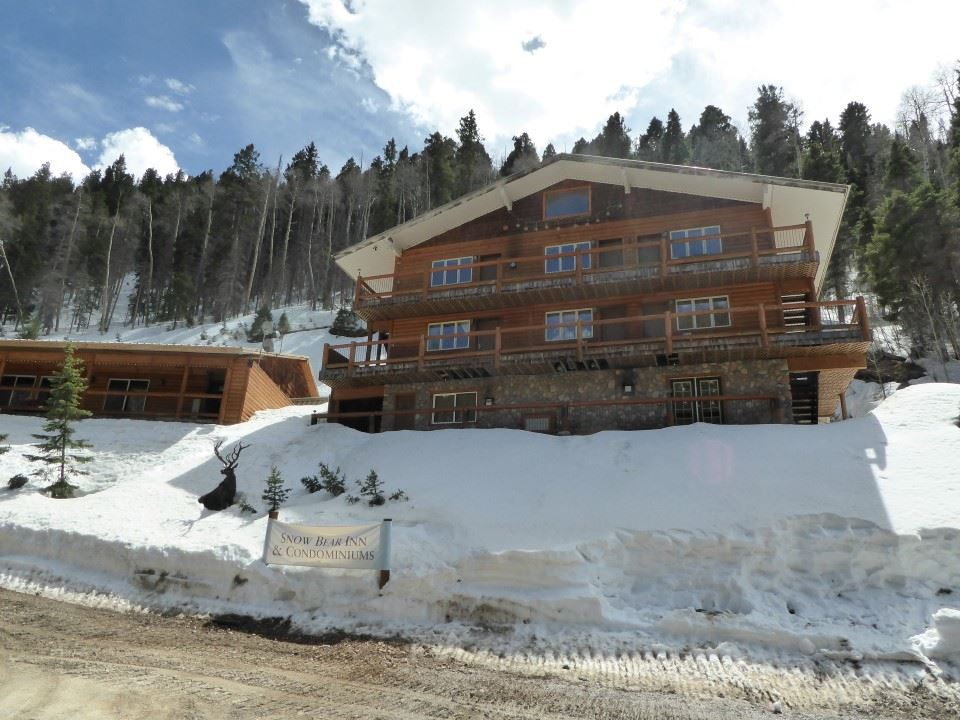 22 Firehouse Road, Taos Ski Valley, NM 87525