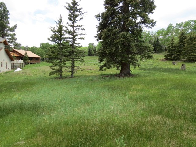 Lot 1178 Colonial Trail, Angel Fire, NM 87710