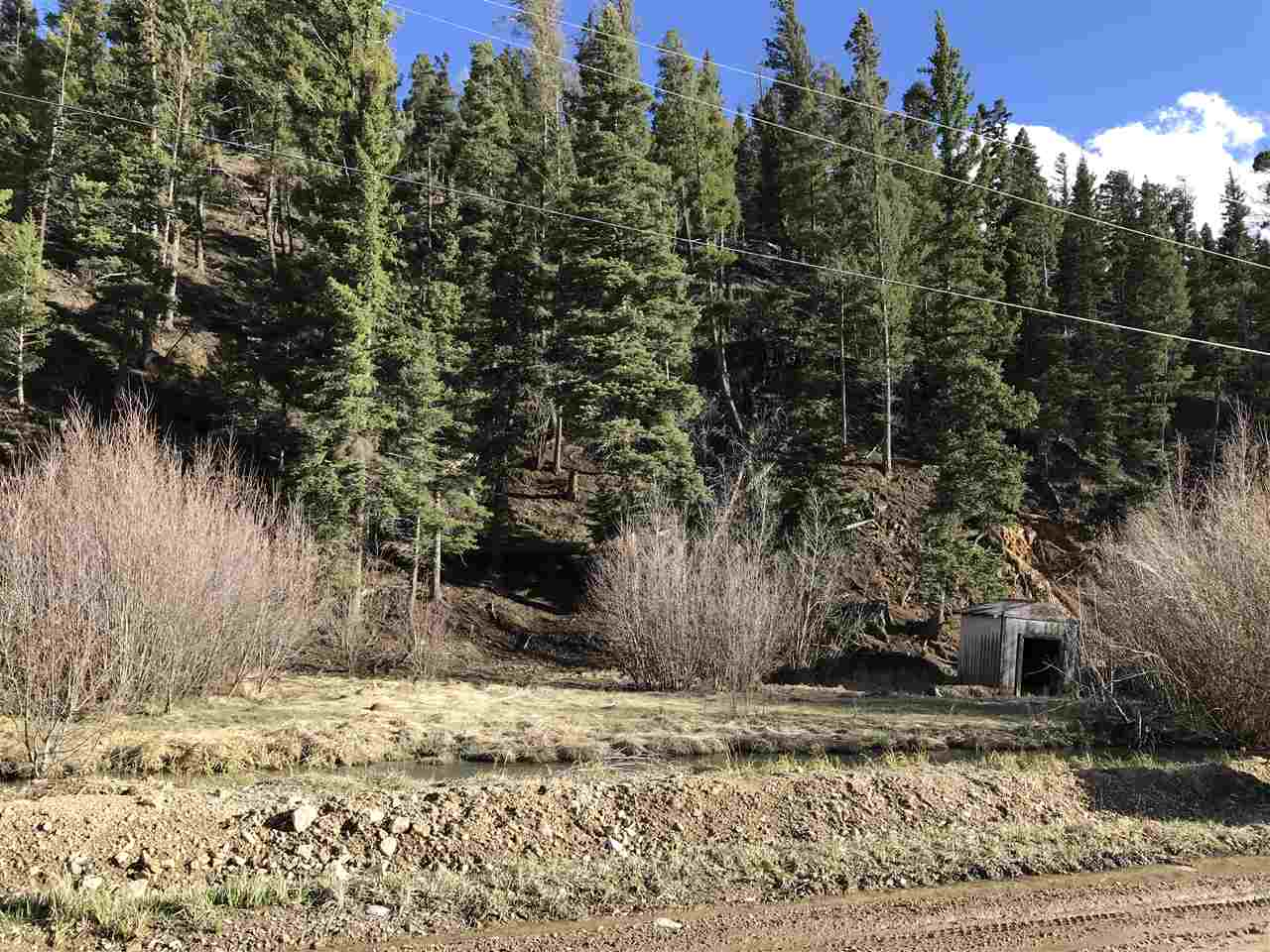 Tenderfoot Trail, Red River, NM 87558